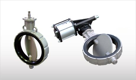 VW_Butterfly Valve with and without CP